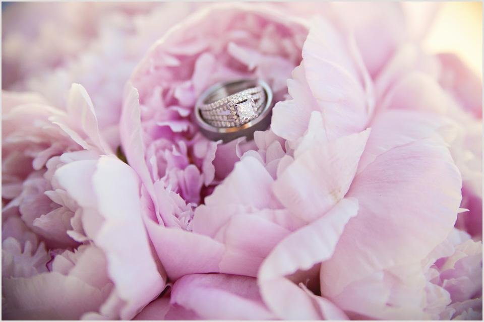 wedding rings on pink peonies